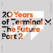 20 Years of Terminal M – The Future, Pt. 2 di Various Artists