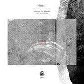 Struggle In Vain EP (Inc Kwartz Remix) by Nørbak