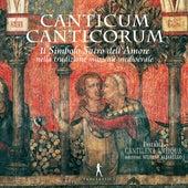 Canticum canticorum de Cantilena Antiqua