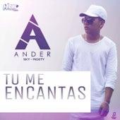 Tu Me Encantas by ANDER