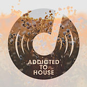 Addicted To House de Various Artists