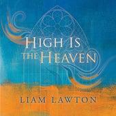High Is the Heaven de Ardhu