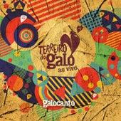 Terreiro do Galo (ao Vivo) von Galocantô