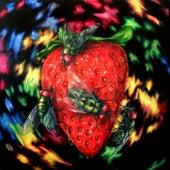 Seedless by Sagan Jacobson