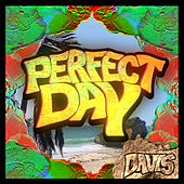 Perfect Day by Davis?