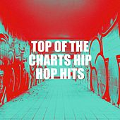 Top of the Charts Hip Hop Hits by Bling Bling Bros, Miami Beatz, Regina Avenue, Graham Blvd, Fresh Beat MCs, Platinum Deluxe, Sister Nation