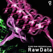 Pure Raw Records presents RawData de Various Artists