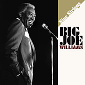 Nine Strings de Big Joe Williams