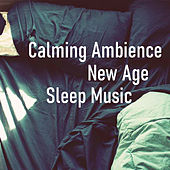 Calming Ambience New Age Sleep Music by Various Artists