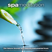 Spa Meditation: Zen Nature Sounds and Relaxing Instrumental Music For Spa, Massage Therapy Music, Meditation Music, Mindfulness, Healing, Wellness, Yoga, Spa Music, 1 Hour Music For Massage, Music For Meditation and Spa Music by Spa Music (1)