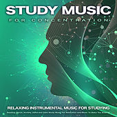 Study Music For Concentration: Relaxing Instrumental Music For Studying, Reading, Focus, Anxiety, Adhd and Calm Study Music For Relaxation and Music To Make You Smarter de Studying Music