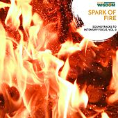 Spark of Fire - Soundtracks to Intensify Focus, Vol. 2 by Various