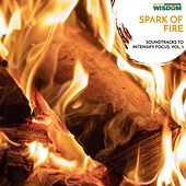 Spark of Fire - Soundtracks to Intensify Focus, Vol. 5 by Various