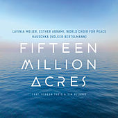 Fifteen Million Acres von Lavinia Meijer