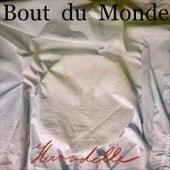 Hirondelle de Bout Du Monde