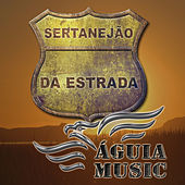 Sertanejão na Estrada de Various Artists