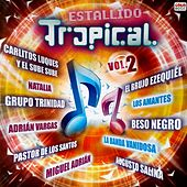 Estallido Tropical Vol 2 von German Garcia