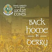Back Home in Derry von Derek Warfield