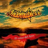 El Color del Ayer de Los Indomables