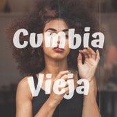 Cumbia Vieja by Armando Hernandez, Fito Olivares Y Su Grupo, Los 50 De Joselito, Los Gaiteros De San Jacinto, Tropical Del Bravo