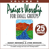 Praise & Worship for Small Groups, Vol. 3 (Whole Hearted Worship) by Oasis Worship