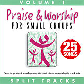 Praise & Worship for Small Groups, Vol. 1 (Whole Hearted Worship) de Oasis Worship