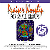Praise & Worship for Small Groups, Vol. 4 (Whole Hearted Worship) by Oasis Worship