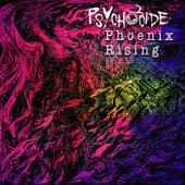 Phoenix Rising de Psychocide