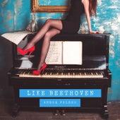 Like Beethoven de Andor Foldes