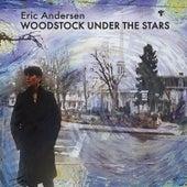 Woodstock Under the Stars de Eric Andersen