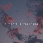 If the World Was Ending by Cande Bulla & Mougel