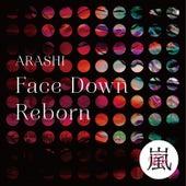Face Down : Reborn de Arashi