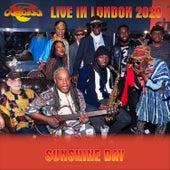 Sunshine Day (Live in London, 2020) di Osibisa