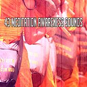 43 Meditation Awareness Sounds von Massage Therapy Music