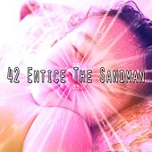 42 Entice the Sandman de Best Relaxing SPA Music