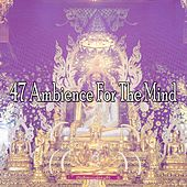 47 Ambience for the Mind von Entspannungsmusik