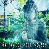64 Awaken Your Senses von Entspannungsmusik