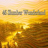 46 Slumber Wonderland de Exam Study Classical Music Orchestra