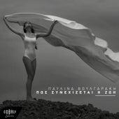 Pos Synechizetai I Zoi by Pavlina Voulgaraki