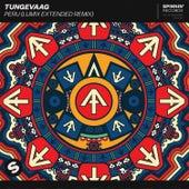 Peru (LUM!X Extended Remix) by Tungevaag