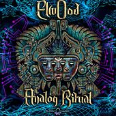 Analog Ritual de Elwood