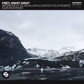 Wir Sind Nicht Allein (Allein Allein) [feat. Felix Räuber] (DubVision Remix) de Frey