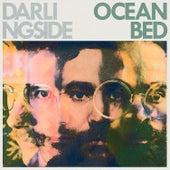 Ocean Bed von Darlingside