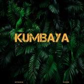 Kumbaya de DJ Boomin