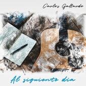 Al Siguiente Día de Carlos Gallardo