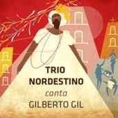 Canta Gilberto Gil von Trio Nordestino