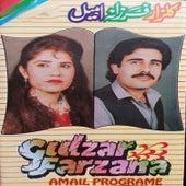Amail Programe by Gulzar