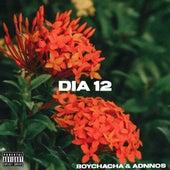 Dia 12 von BoyChaCha Adnnos