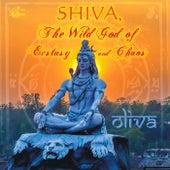 Shiva, The Wild God of Ecstasy and Chaos de Oliva