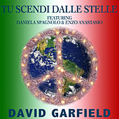 Tu Scendi Dalle Stelle by David Garfield